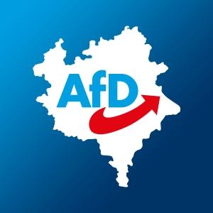 Was können Sie tun, um die AfD regional zu unterstützen?